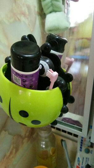 英国小树苗 儿童婴儿加钙葡萄味牙膏70g 无氟可吞咽 适合1-6岁宝宝 晒单图