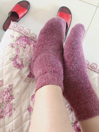 3双装 冬季女士加厚加绒羊毛袜子羊绒袜子厚特厚羊毛毛圈袜毛巾袜拉毛袜子拉绒保暖袜羊毛中筒袜 3双装(萌小希) 均码 晒单图