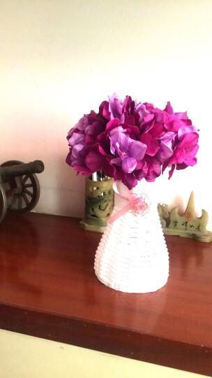 wo+ 仿真花假花法式绣球花大朵 餐桌花客厅茶几卧室花艺装饰花套装 天蓝色水纹收口玻璃瓶+3支蓝色绣球1束波斯叶 晒单图