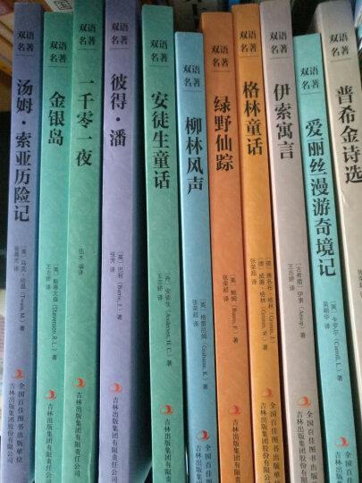 英文原版+中文版 英汉对照 格林童话 安徒生童话 一千零一夜 伊索寓言  晒单图