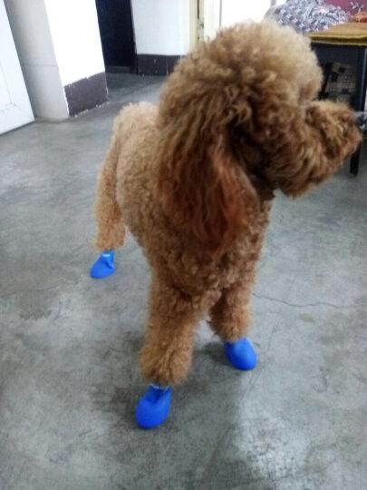 么么熊狗狗雨鞋子宠物雨鞋小狗比熊雪纳瑞博美贵宾犬泰迪硅胶鞋防水宠物美鞋 粉红色 M 晒单图