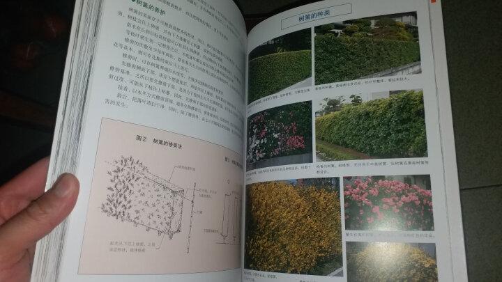 现代日式庭院设计 晒单图