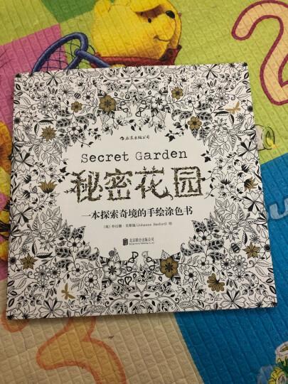 秘密花园涂绘学院丛书:美味食光 晒单图