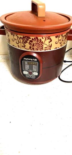 九阳(Joyoung)电炖锅 电炖盅 大容量快炖紫砂 养生全自动预约家用电砂锅陶瓷煮粥煲汤锅K423 晒单图