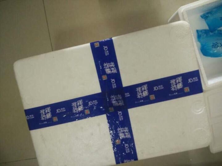 圃美多 冰花脆皮煎饺 排骨味 350g(饺子 蒸饺 早餐 韩餐) 晒单图