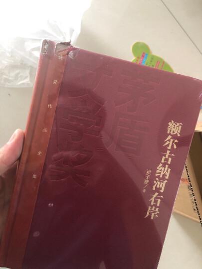 茅盾文学奖获奖作品全集:张居正(套装1-4卷) 晒单图