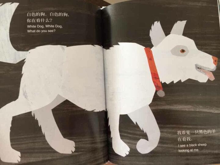 棕色的熊棕色的熊你在看什么 中英双语 精装 信谊绘本世界精选图画书 晒单图