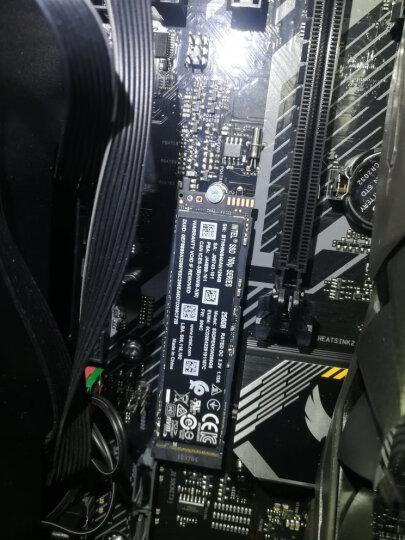 WD 西部数据(蓝盘) 1TB SATA6Gb/s 7200转64M 台式机电脑机械硬盘 晒单图