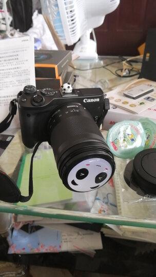 佳能(Canon)EOS M6 微单相机 微型可换镜数码相机 单机身照相机 EF-M 15-45mm镜头套机黑色 套餐四 晒单图