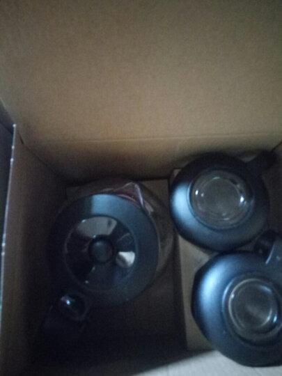 紫丁香 玻璃茶具套装 加厚耐热玻璃大容量304不锈钢过滤茶壶冲茶器功夫茶杯礼盒整套700MLS391 晒单图