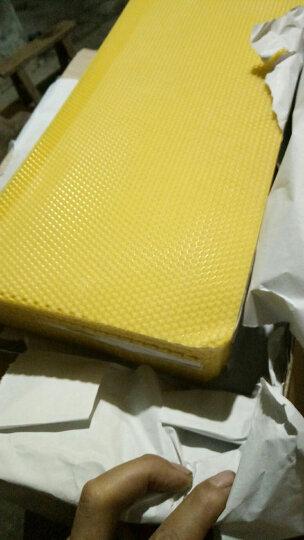 蜜蜂巢础养蜂巢基中蜂巢础蜂巢基巢础蜡片蜂箱蜂脾30片尺寸41.5X19.5CM  晒单图