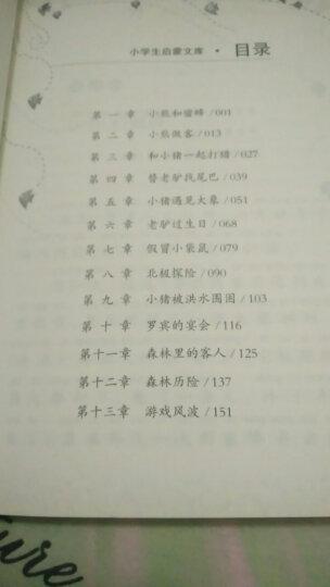 小学生启蒙文库:小熊温尼·菩 晒单图