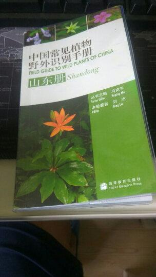 中国常见植物野外识别手册(衡山册) 晒单图