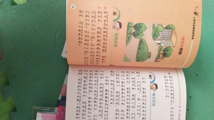 杨红樱笑猫日记:永远的西瓜小丑 晒单图
