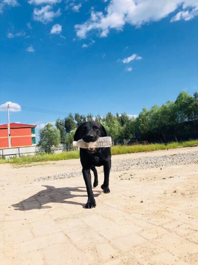 宝路 宠物狗粮 成犬全价粮 金毛拉布拉多萨摩耶全犬种通用 均衡营养鸡肉味15kg 晒单图