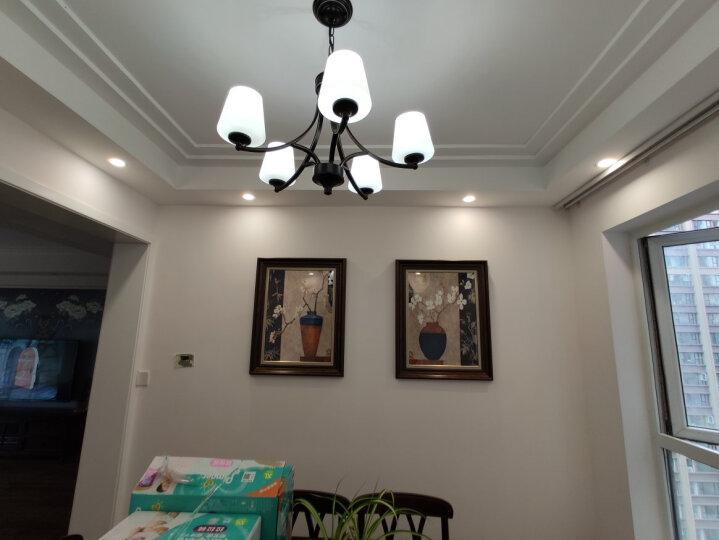 心泊(SIMPLE S) 餐厅装饰画美式壁画欧式走廊过道挂画二联艺术有框画富贵平安 富贵平安(中式、美式推荐) 63x80CM双联(适合2.5-3米墙面) 晒单图