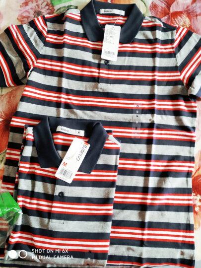 【调货】Baleno/班尼路 潮流撞色polo衫男 休闲商务条纹翻领短袖T恤男 69P黑莓紫 S 晒单图