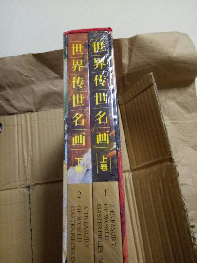 正版 世界传世名画(套装全2册彩图铜版纸精装)世界名画 中国传世名画 名画 世界名画欣赏 晒单图