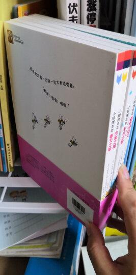 双螺旋童书:第一次做面包(全4册) 晒单图