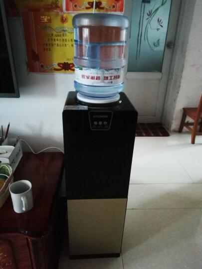 韩国现代(HYUNDAI)BL-LWS12 立式双门温热型饮水机 晒单图