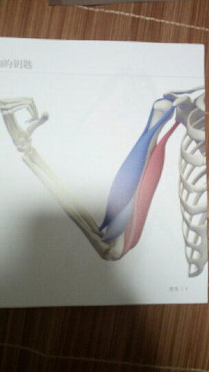 躯干跑步法 晒单图