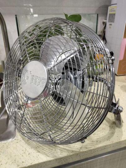 远东电风扇趴地扇大功率强力扇台地扇爬地扇 工业风扇10寸 12寸16寸18寸20寸 500mm20寸趴地扇 晒单图
