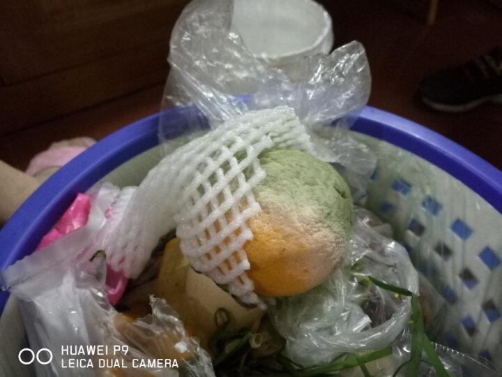 【远安馆】湖北秭归脐橙 夏橙酸甜橙子大果70-85mm 新鲜水果 精品9斤装 晒单图