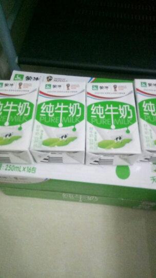 蒙牛 纯牛奶 PURE MILK 250ml*16 礼盒装 晒单图