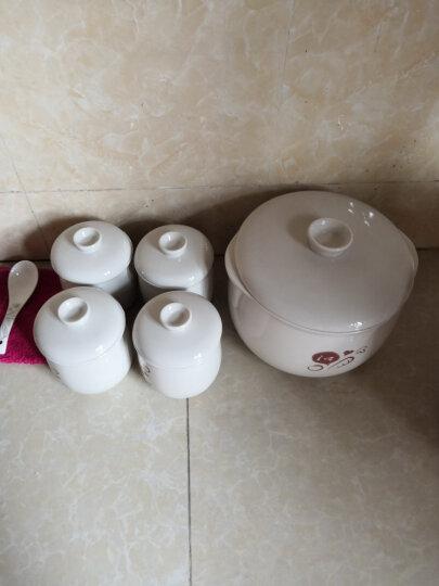 小熊(Bear)电炖锅 电炖盅 隔水炖陶瓷煮粥煲汤锅燕窝炖盅 DDZ-A35G1 晒单图