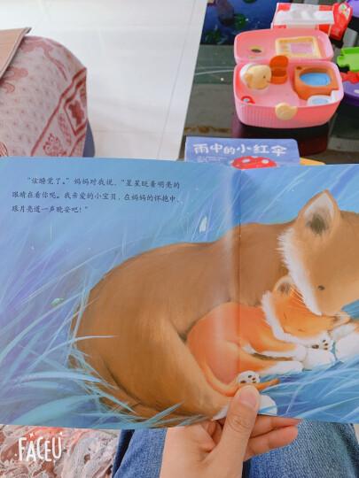 暖房子经典绘本系列第七辑贝尔熊(套装共8册) 晒单图