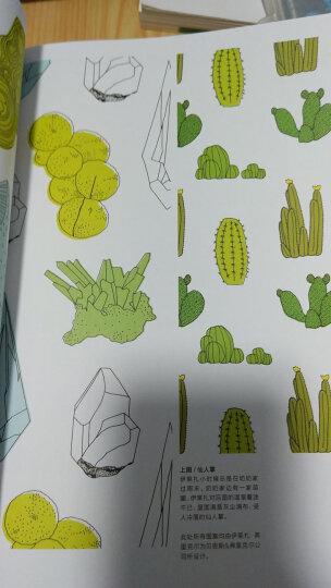 跟菲利大叔学手绘:如何成为一名插画家/西方经典美术技法译丛 晒单图