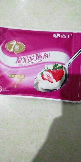 尚川酸奶发酵菌粉 双歧益生菌粉乳酸杆菌酸奶粉 家用自制酸奶发酵剂双歧杆菌种小包10克 晒单图