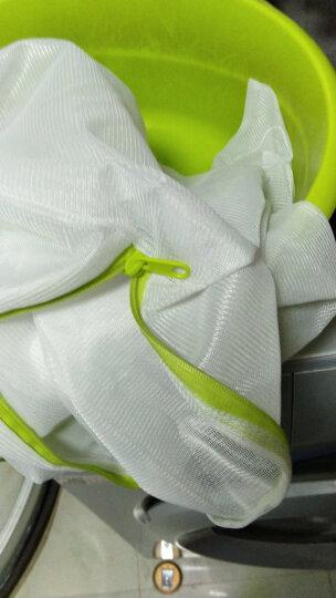 美丽雅 衣物洗护袋内衣文胸外套机洗专用袋加厚粗网洗衣袋三件套 晒单图