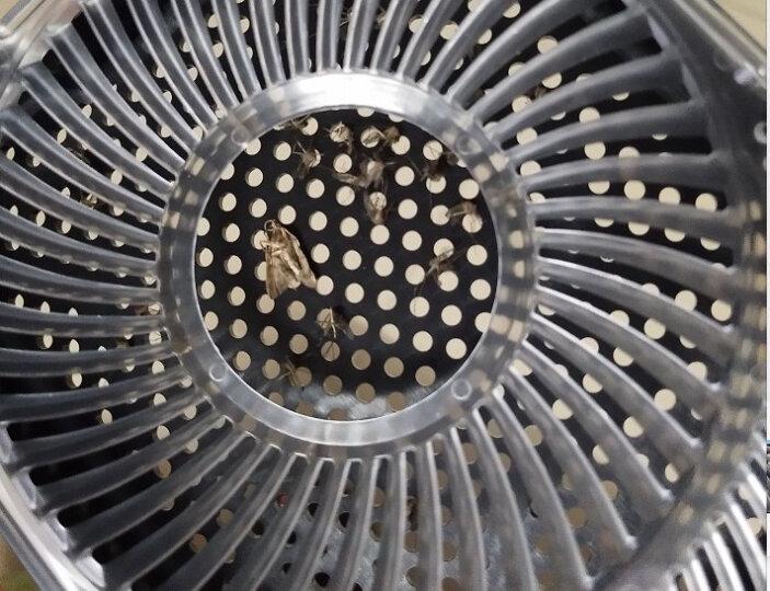 三板斧灭蚊灯家用电子灭蚊器神器驱蚊器灭苍蝇灯灭蚊子诱捕蚊器防蚊吸蚊灯室内外静音 薰衣紫/经典版/USB接口 晒单图