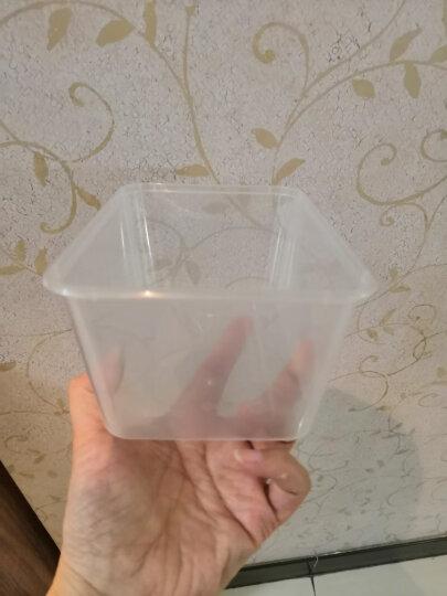 笑妈妈 20只装一次性打包盒餐盒方形1000ML带盖家用酒店专用食品保鲜盒 晒单图