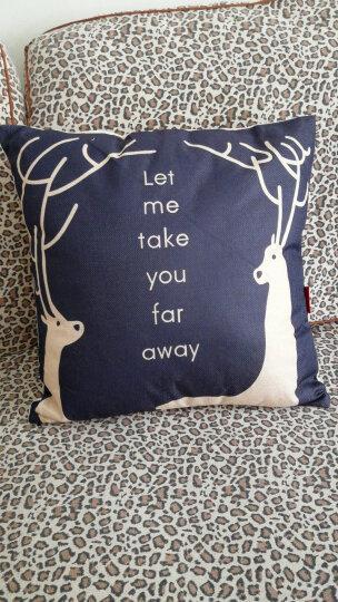 九洲鹿家纺 卡通亚麻风格抱枕沙发靠垫办公室靠枕床头靠背汽车腰靠垫腰枕垫 含芯 开心熊猫 45x45cm 晒单图