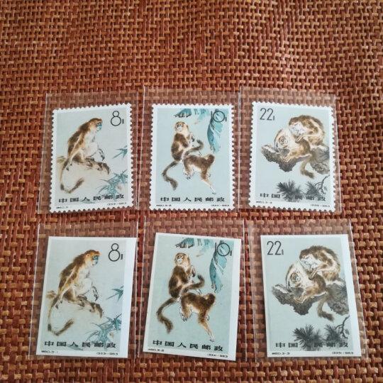 东吴收藏 特41-特60  邮票 老纪特新票 集邮 特60金丝猴 无齿 晒单图
