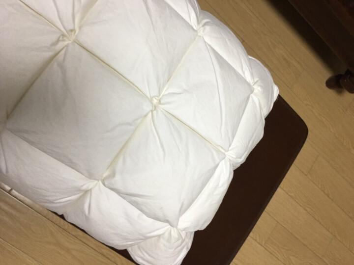 南极人 全棉羽绒羽毛枕头酒店舒适枕柔软鹅毛枕芯学生成人枕头芯 白色面包型低枕 单只装 晒单图