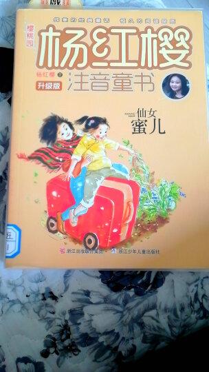 樱桃园·杨红樱注音童书 升级版:仙女蜜儿(注音版) 晒单图