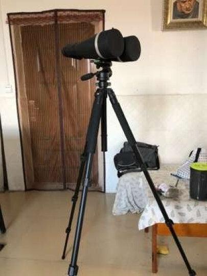 伟峰三脚架WF-6663A镁铝合金单反数码相机三角架便携旅游摄影脚架 夜钓灯架 手机三脚架 WF-6663A+索尼遥控器 晒单图