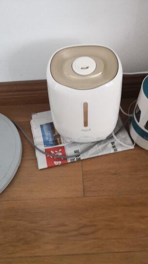 德尔玛(Deerma)加湿器 3L容量 触控感温 家用卧室空气加湿 迷你办公室两用香薰加湿 DEM-F420S(金色) 晒单图