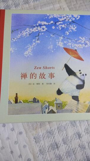 琼·穆特:熊猫师父和阿古 (爱心树童书) 晒单图