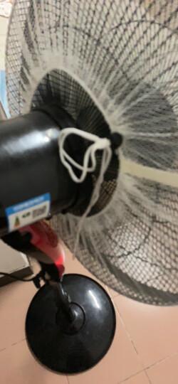 宜百利 电风扇罩 通用电扇安全罩子 台扇落地扇防夹手保护罩 适用16寸电扇防灰套子 纯白款无花边3106 晒单图