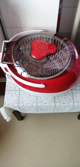 【闪电发货】家用洗菜机 全自动智能臭氧清洗机厨房多功能活氧蔬菜果蔬净化解毒机 新款红色 晒单图