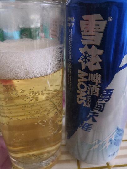 雪花啤酒(Snowbeer) 勇闯天涯 500ml*12听 整箱装 晒单图