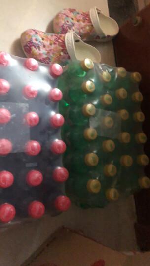 雪碧 Sprite 柠檬味 汽水 碳酸饮料 300ml*24瓶 整箱装 可口可乐公司出品 晒单图
