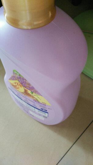 卫新薰衣草柔顺剂金装卫新升级3kg×2 合计6kg 与洗衣液搭配使用 晒单图