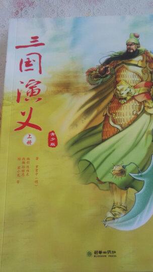 三国演义(青少版 套装上下册) 晒单图