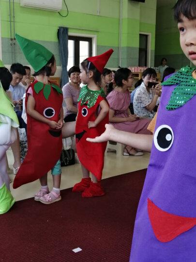 cos万圣节儿童节表演服装 学校环保演出服 草莓西瓜儿童水果蔬菜衣服 幼儿园手工环保服装 菠萝服 大人均码155-170cm 晒单图