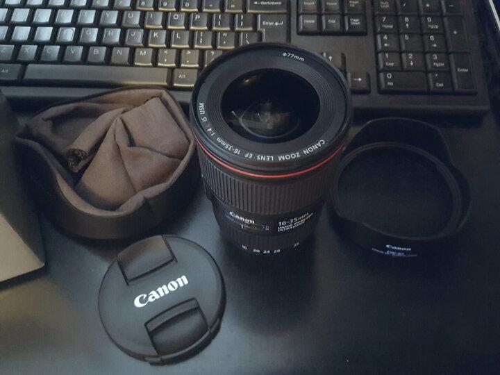 佳能(Canon) EF 17-40mm f/4L USM 广角变焦镜头 晒单图